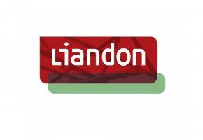 Liandon